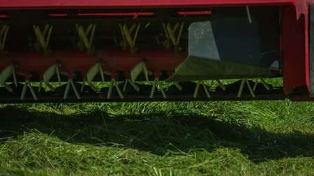 keser : Rotary rakes are approaching the ground and are turning around freshy cut grass. Close-up shot. Stok Video