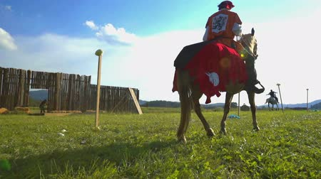 rytíř : SENTRUPERT FESTIVAL SEPTEMBER 2016 Two noblemen are riding their horses across the meadow and they are competing. One of them is going slowly and the other one is going fast. Close-up shot.