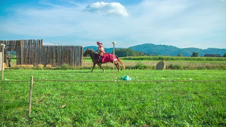 all ages : A knight is riding a brown horse across the meadow and he is trying to hit all the vegetables off the poles. It is a beautiful sunny day. Stock Footage