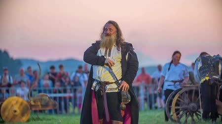 rytíř : The king puts his sword back behind his belt. Then he starts walking on the grass. It is beginning to get dark.