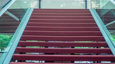 talapzat : Modern staircase in red carpet flooring with protective glass fence in the interior of an art gallery.