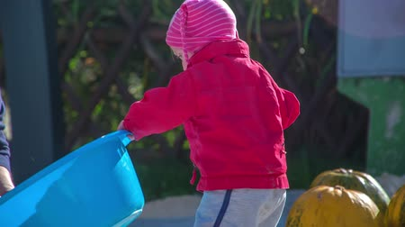 полый : A small toddler puts a big blue bucket on the ground. Her mom is cleaning the pumpkins outside and she is helping her.