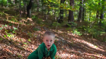 корзина : A boy throws a small pile of tree leaves up in the air. He loves it. He is spending some time outdoors. Стоковые видеозаписи