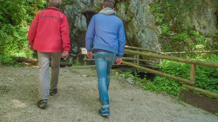 crab of the woods : ZALECCELJE, SLOVENIA - 18. MAY 2017 Two young men are walking towards the cave and they are crossing a bridge. Stock Footage