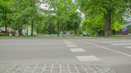 nem városi színhely : ZALEC, SLOVENIA JUNE 10th 2017 Zebra crossing and a main street next to a park. There is a fountain of beer in the middle of a park.