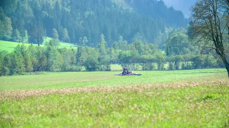 sótão : Farmers are cutting grass on grass fields on this beautiful day. Its summer time.