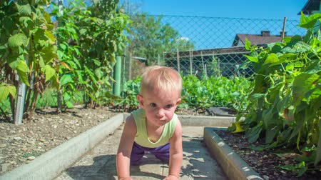 сосредоточиться на переднем плане : Adorable little girl slowly crawling in the garden then sits down and claps her hands.
