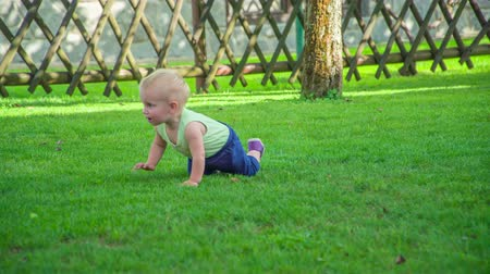 сосредоточиться на переднем плане : Adorable toddler slowly crawls and curiously discovers outdoors on a hot sunny day.