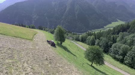 bales : A big tractor is preparing hay on a huge meadow. Its summer time and the day is really nice. Aerial shot. Stock Footage