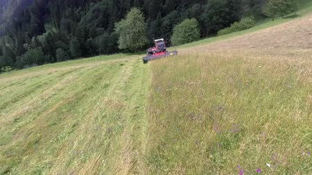 тюк : Tractor is cutting grass with a special machinery. The day is sunny and warm. Стоковые видеозаписи