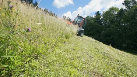 sklizeň : A tractor is slowly and carefully driving downhill and it is cutting grass with agricultural machinery. The day is sunny and warm. Dostupné videozáznamy