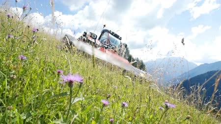 kurutulmuş : The farmer is very brave to be able to drive his tractor and cut grass on such a steep hill. Its summer time.