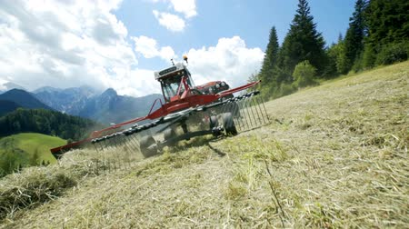 hay mowing : Big rakes are turning hay around when a farmer is preparing hay with his tractor and agricultural machinery.