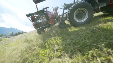 hay mowing : A tractor is slowly driving downhill when preparing hay in the summer. The rakes on the agricultural machinery are moving.