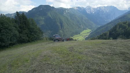 döner : A tractor is driving on the steep hill and the farmers are preparing hay. The view is amazing. Stok Video