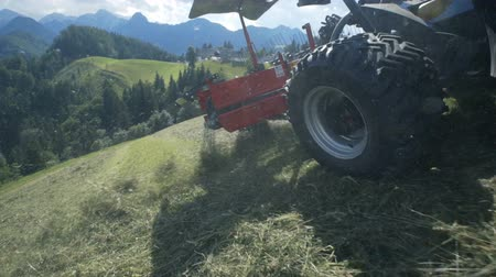 ancinho : Hay is flying around when rakes on the agricultural machinery are moving fast. The tractor is driving on a steep hill.