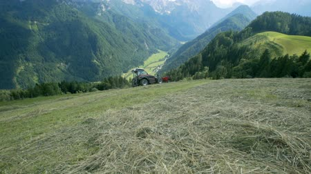 kurutma : A tractor needs to be very flexible in order to move on the steep hills and prepare hay. The view in the back is magnificent. Stok Video