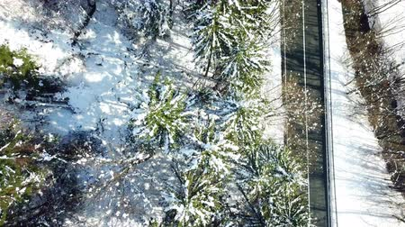 yedek : The spruce trees are green and they are covered with snow. Its winter time in Slovenia. Aerial shot.