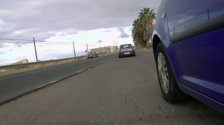 есть : A blue car is driving behind another car. There are palm trees on the side of the road.
