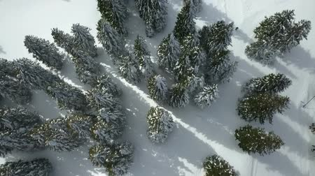 děje : There is a lot of snow on spruce trees. This is happening at a famous ski resort in Slovenia. Aerial shot.
