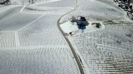 śnieżka : Peaceful nature in winter time. Aerial shot. Vineyards are covered with snow.