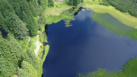 batido : A lake and forest off the beaten track. Aerial shot. Nature is really gorgeous in the summer time.