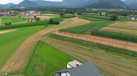 slovenya : We can see brown fields and green meadows in the stunning Slovenia. Aerial shot. The country is really beautiful.