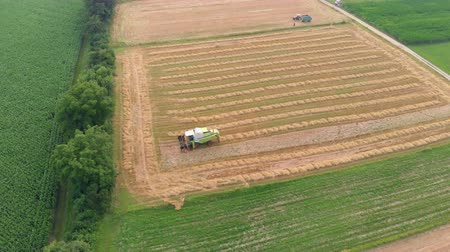 slovenya : A combine is driving on the field and is harvesting wheat. Aerial shot. Its summer time.