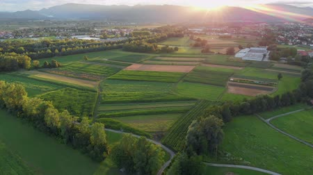 slovinsko : Magnificent green fields. Slovenia is an amazing country. Dostupné videozáznamy