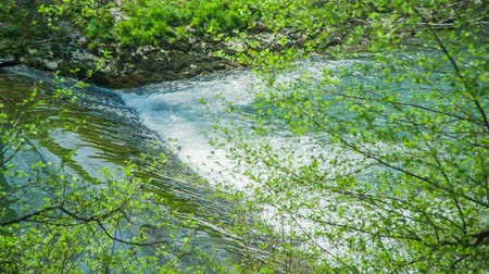 brochura : A peaceful river is flowing. The nature is beautiful and green.