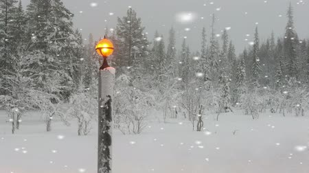 magical : Glowing orange light in a winter snowstorm