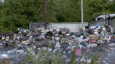 unpleasant smell : a garbage dump pollutes the environment Stock Footage