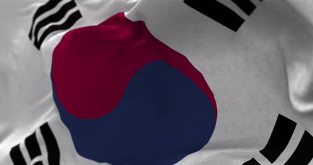 north korean flag : Close up South Korea flag blowing in the wind, looped slowmotion, 4K Stock Footage
