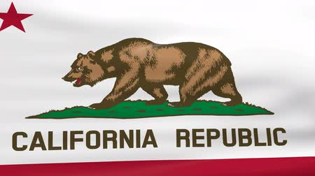 Калифорния : Waving California State Flag Стоковые видеозаписи