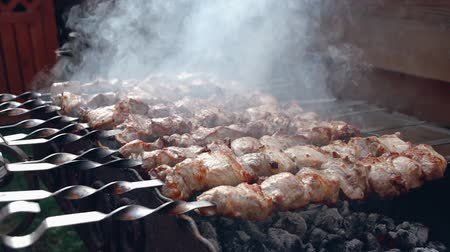 kebab : kebab on fire Stock Footage