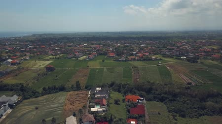 plantations in bali indonesia