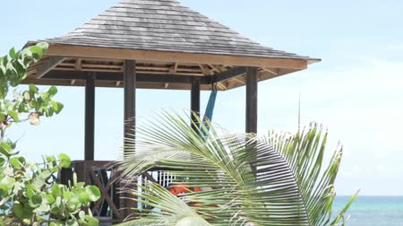 hilton : A beautiful gazebo by the sea. Next to the pergola is a palm tree. Its leaves develop in the wind. The best screensaver, super nice look Stock Footage