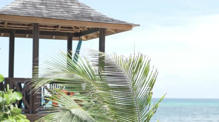 hilton : A beautiful gazebo by the sea. Next to the pergola is a palm tree. Its leaves develop in the wind. beautiful picture on your desktop