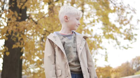scold : Handsome blond boy is standing in the autumn park. All trees are in yellow leaves. The boy is dreaming about something. Leaves slowly fall on top of it