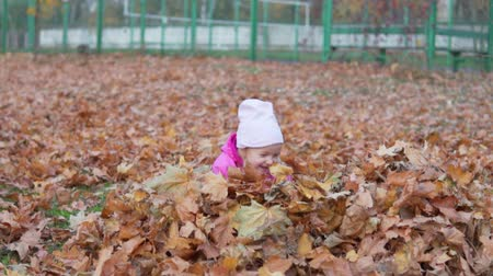 playful infant : Little funny girl jumps into a pile of autumn leaves. The whole earth is covered with autumn leaves. There is a beautiful autumn outside. Walk in the park.