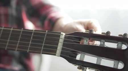 csípés : The girl in the plaid shirt tunes the guitar. Focus on the guitar. Female hand tightens the strings and checks the sound