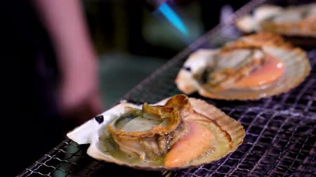 scallop : delicious scallop on the grill burned by a flame gun and heated to bubbling and juicy in restaurant. Stock Footage