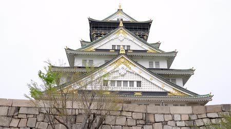 solene : moving along the bottom structure of the stone wall of osaka castle by a background of white and clear sky.
