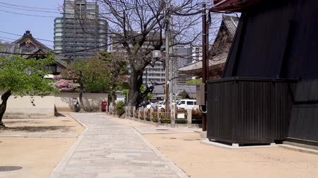 osaka : a pretty woman visiting an old japanese temple and walking on the stone path relaxingly. Stock Footage