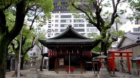 osaka : peaceful Japanese traditional temple with Torii and Toro standing beside