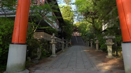 guardian : peaceful little path to the Japanese wooden temple with many trees around
