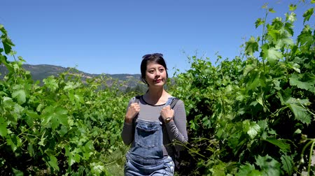éretlen : asian girl travel backpacker walking through vineyard. woman tourist enjoying freedom in nature outdoors with blue sky on sunny day trip in usa napa wineries. happy smiling chinese female relax sun