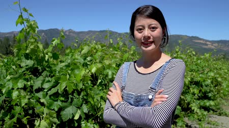 szőlőművelés : Young female asian winemaker in vineyard with arms crossed confident smiling face camera standing under blue sky sunshine. elegant attractive chinese farmer looking happy in wineries farm outdoors. Stock mozgókép