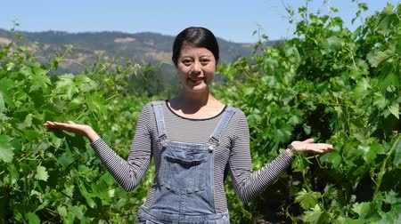 tasting : young casual asian local woman welcoming gesture sign with smile face and opening hands standing in vineyard. Stock Footage