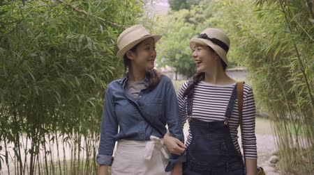 tokio : two young Asian women travelers point and talk about surroundings walking in nature forest. girl friends relaxing chatting in bamboo grove travel osaka japan. beautiful best sisters walk hold hands
